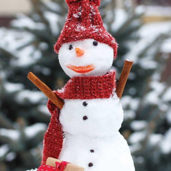 Leuke sneeuwpop in sneeuwachtergrond